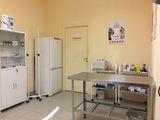 Клиника Био-Вет, фото №3