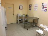 Клиника Био-Вет, фото №5