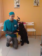 Клиника ВетПривет, фото №5