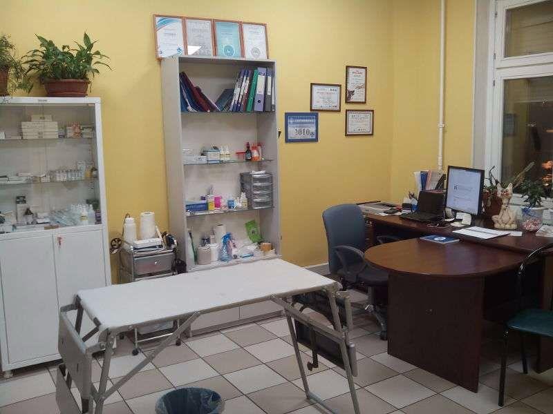 Клиника Ветеринарный кабинет, фото №3