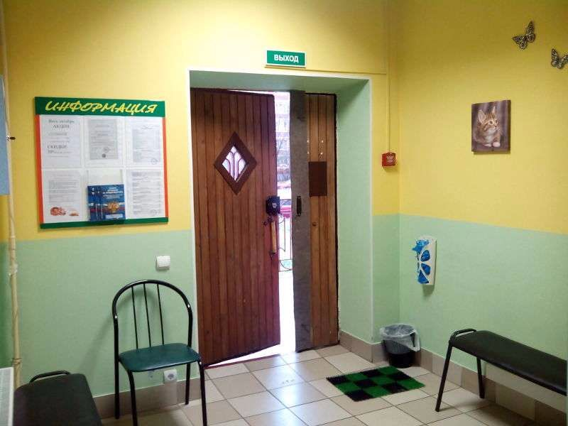 Клиника Ветеринарный кабинет, фото №2
