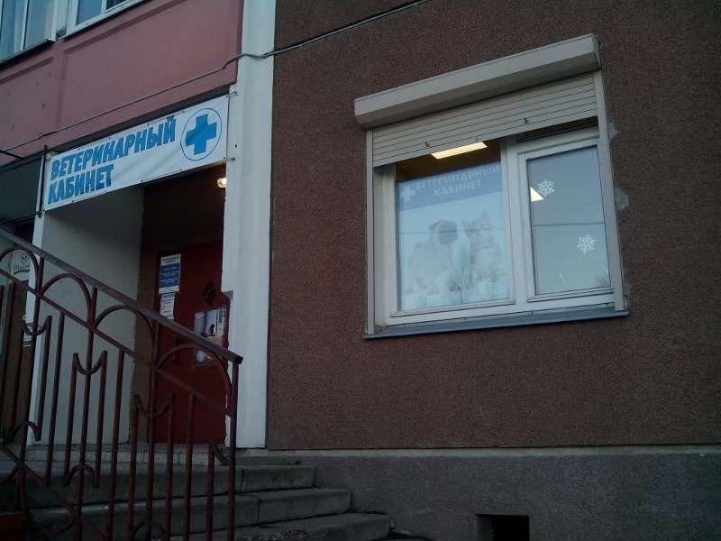 Клиника Ветеринарный кабинет, фото №1