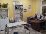 Клиника Ветеринарный кабинет, фото №4