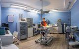 Клиника Domvet, фото №4