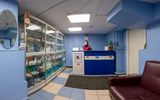 Клиника Domvet, фото №2